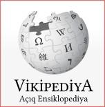 Vikipediyada səhifə