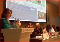 2-ci Regional İnternet İdarəçilik Forumunda çıxış zamanı